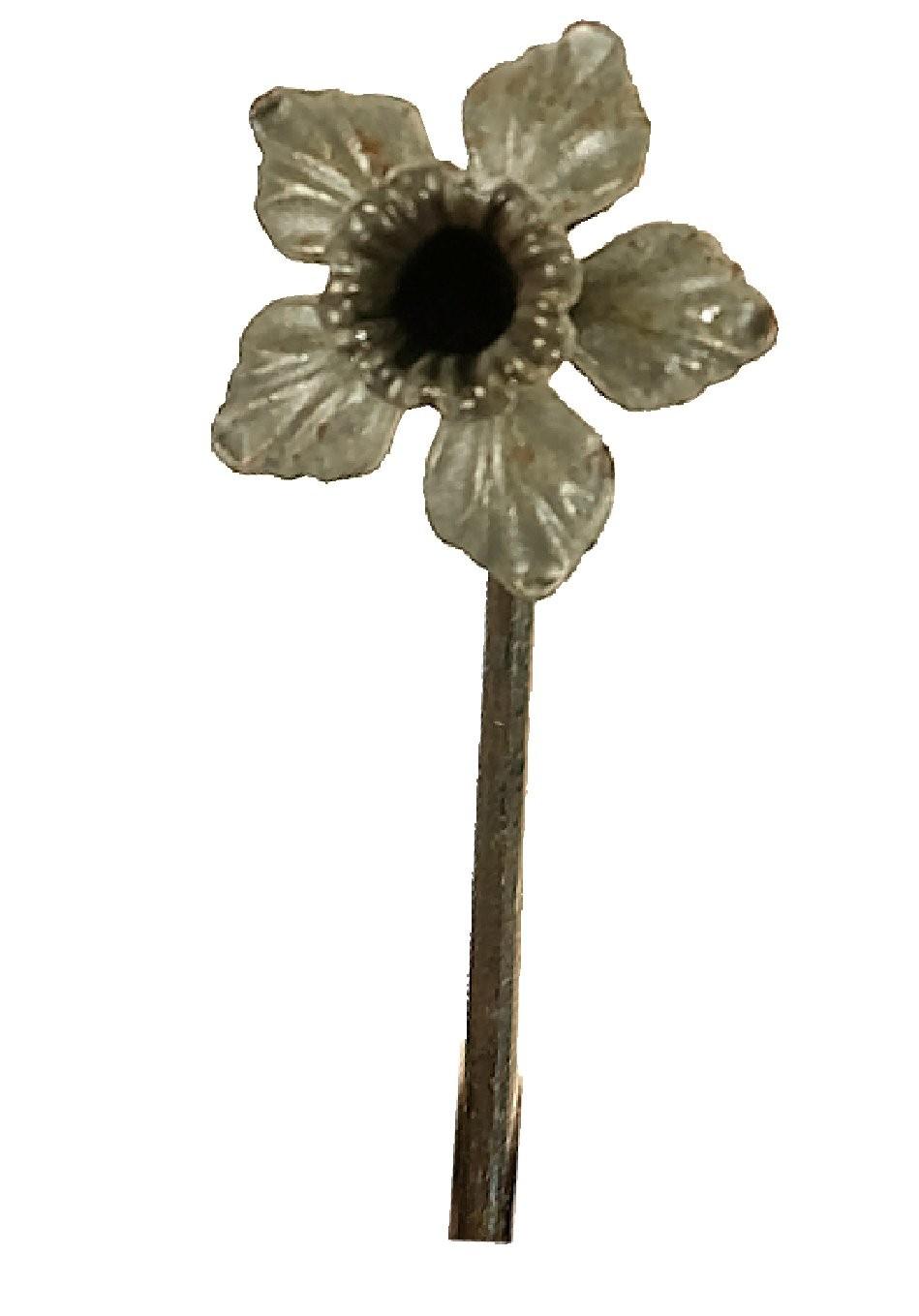 Daffodil on Stem