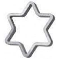 "Star of David (4""W)"